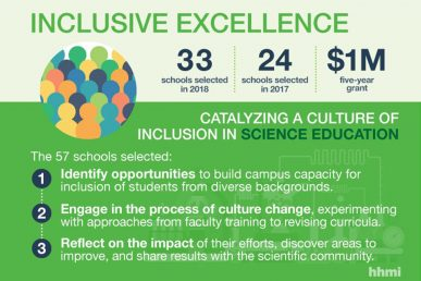inclusive excellence summary
