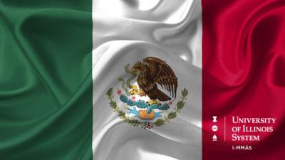 Mexican flag & I-MMAS logo