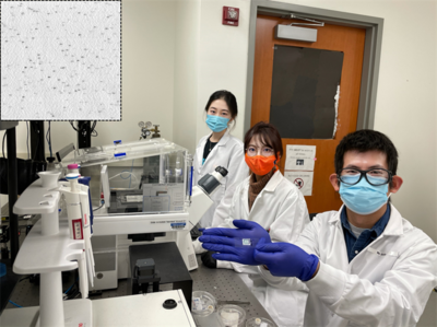 research team in the lab